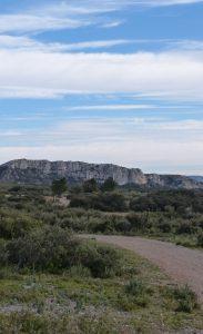 Paysage de garrigue et vue des Alpilles sur le sentier de grande randonnée